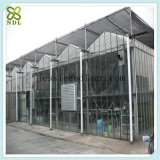 프레임 Hydroponic 시딩 유리제 녹색 집