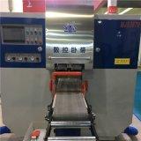 Machine de découpe de bois Scie à ruban avec CNC Sestem