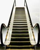 Escada rolante interna de um auto começo de 35 graus com etapa de alumínio