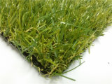 Paesaggio Grass per il giardino e Synthetic Grass