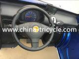 3000W Electric Mini Car con CA di Cold (SP-EV-09)