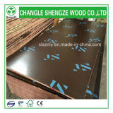 WBP Glue Lower Price para 15mm Printed Logo Film Faced Plywood