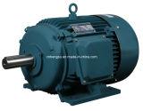 Série Y Motor de indução eléctrica trifásica