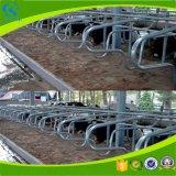 Оцинкованный коровы бесплатно глохнет сарай крупного рогатого скота панелей