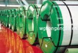 Катушка Q235B цвета покрытая стальная