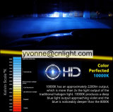 자동차 또는 기관자전차 헤드라이트 자동 LED를 위한 특별한 보충 크세논 전구는 & 재고 숨기는을%s 점화에 의하여 숨겨지은 보충 전구, 숨겨지은 OEM, 크세논 전구를 숨겼다