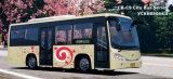 Autobus de C8-C9 Ciyt (YCK6850HC3)