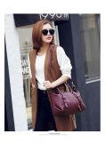 Schouder van de Manier van Zippered Pu de Decoratieve Dame Handbag Nice Designer (WDL0220)