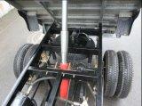 Triciclo de carga de 200cc con sistema de vuelco/Trike Motor de 5 ruedas (TR-8)