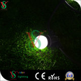 Berufshersteller-Weinlese Ediso Dimmable Birne des Heizfaden-LED