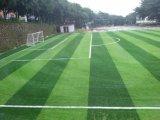Césped artificial de fútbol cómodo para dos tonos