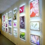 Visualización de acrílico iluminada montada en la pared de los marcos