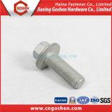 MOQ1000PCS Parafuso e porca de aço inoxidável / aço inoxidável de aço carbono e porca