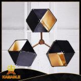 現代デザインアルミニウムステンレス鋼のペンダント灯(KA8246-13)