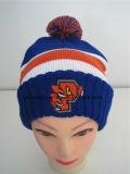 Beanie del cappello del ricamo di inverno lavorato a maglia modo