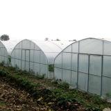 PE Multi-Span vaso Plástico de invernadero hidropónico para el cultivo de hortalizas