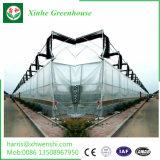 Folha de policarbonato Gutter-Connected abrangem vários gases com efeito de