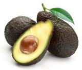Avocado-Auszug Asu Sterine 15%