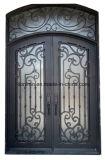 優雅なデザイン習慣のトランサムが付いている外部の機密保護の倍の鉄のドア