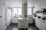 Gabinete de cozinha de madeira excepcional Yb1709049 da mobília do projeto 2017 novo