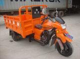 新しい250cc販売の大人3の車輪車の手段