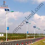 Ce Goedgekeurde IP68 7m 30W LEIDENE ZonneStraatlantaarn (dzs-07-30W)