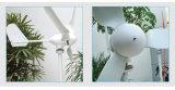 China 500W 12V/24V Wind Turbine met Reasonable Price