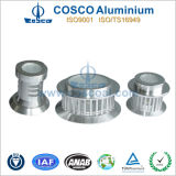 알루미늄 또는 알루미늄은 부속 LED 점화를 위한 내밀었다