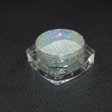 Polvere olografica brillante del pigmento per la polvere olografica del chiodo del polacco di chiodo