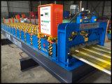 Dx acier couleur Ibr machine à profiler de feuille de toit