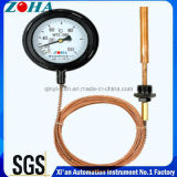 Termometro capillare di pressione con la cassa nera