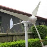 Turbina Eólica para o Sistema de Alimentação de Grade
