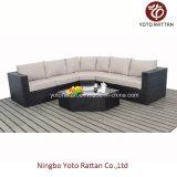 Caldo! Nuovo sofà del rattan di stile impostato (1103)