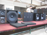 2wegzeile Reihen-Lautsprecher-System (intelligentes 8)