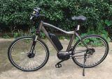 36V 250W 8 Geschwindigkeits-elektrisches Fahrrad