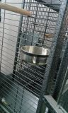 Preiswertes und sicheres Gefäß-Hundehaus