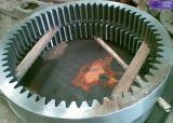 製造者によってカスタマイズされる炭素鋼CNCの機械化のナットギヤリング