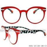 Optische Frame Eyewear van de Acetaat van het Frame van de Rand van de douane het In het groot Volledige Grote