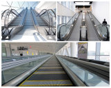지하철, 역, 공항에 있는 실내 공공 수송 기관 유형 에스컬레이터 Pupular