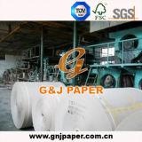 papel mate del tubo 250GSM de tamaño del carrete