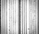ペーパー背部金属の木ずりの肋骨の木ずりの低価格の中国の工場