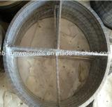 Timbrando guarnizioni di piccola dimensione del rivestimento della guarnizione del rivestimento le doppie (SUNWELL)