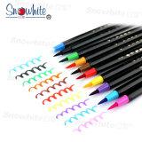 Le crayon lecteur Pm137c de balai avec 10 couleurs doublent la graine