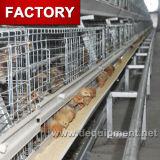 Gaiolas de galinha da camada do fabricante de China para galinhas
