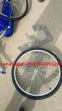 [26ينش] سيادة [بيك]/إمرأة درّاجة مع [لوور بريس]
