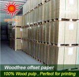 Papel 100% Offset de polpa de madeira do Virgin