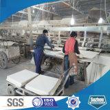 Panneau de fibre minérale Armstrong Sound Proof (certifié ISO, SGS)