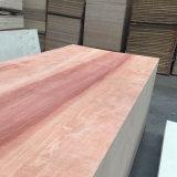Okoume comercial de madera de contrachapado de madera contrachapada de núcleo para muebles/Decoración