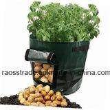 Der 7 Gallonen-Garten-Kartoffel wachsen Beutel mit Griff