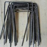 Nietjes van de Omheining Nails/SOD van het Type van U van China de Goedkope/U-vormige Spijker